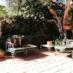 Palos Verdes Estate Sale by Succor Estate Sales 109